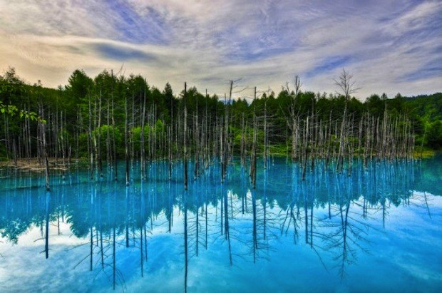 Blå dam