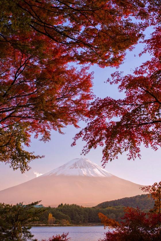 Mount Fuji om efteråret