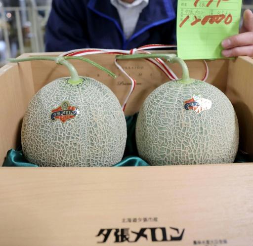 Prisen på premium meloner styrtdykker. Foto: AFP
